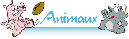Animaux / Ferme